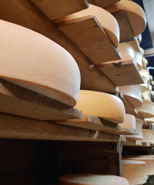 Meules de fromages savoyards